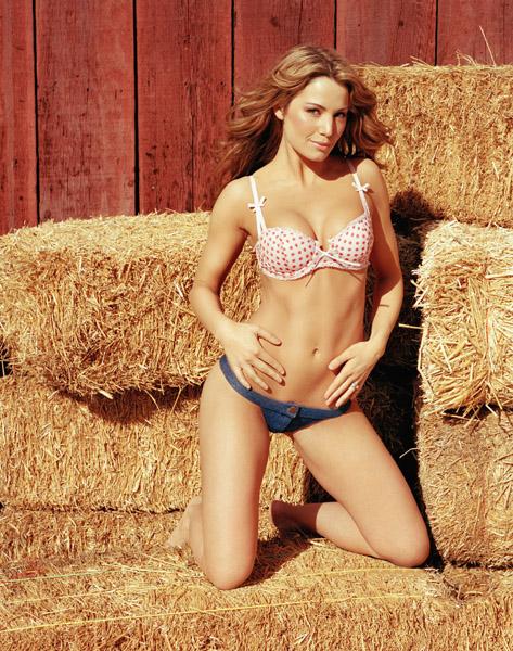 Accept. opinion, Erica durance bikini good